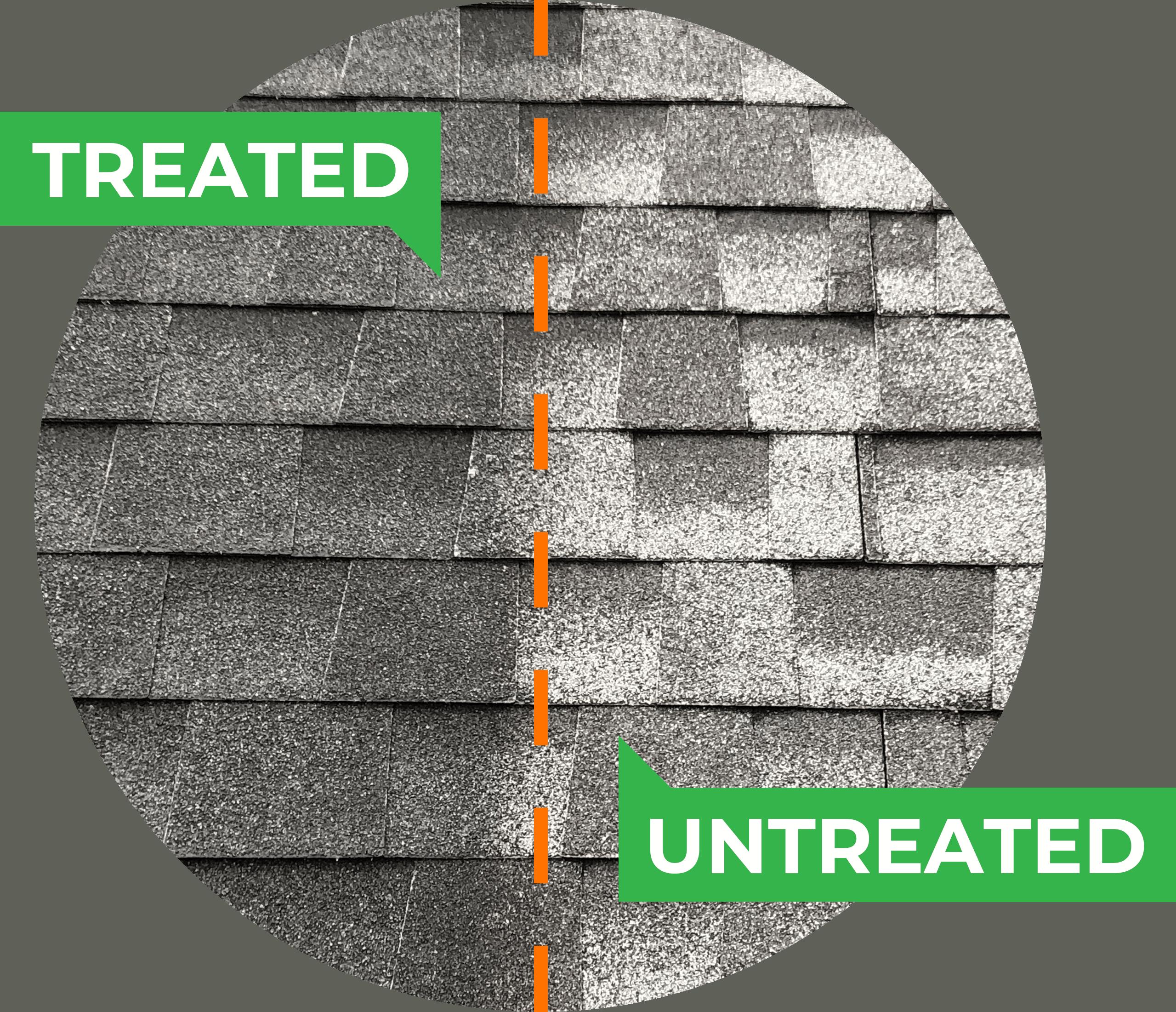 Treated vs. Untreated shingles