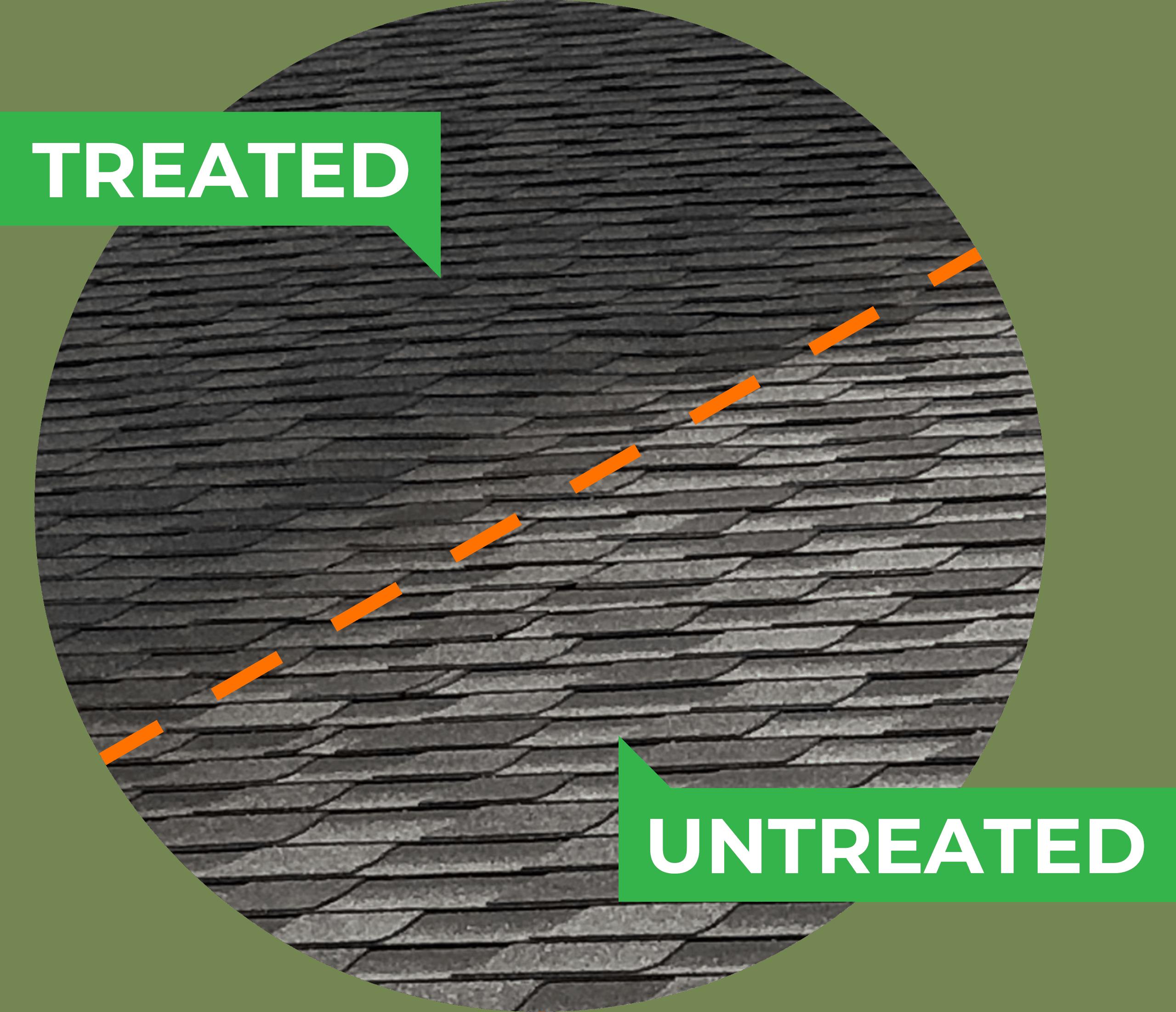 Treated vs. Untreated shingles 2