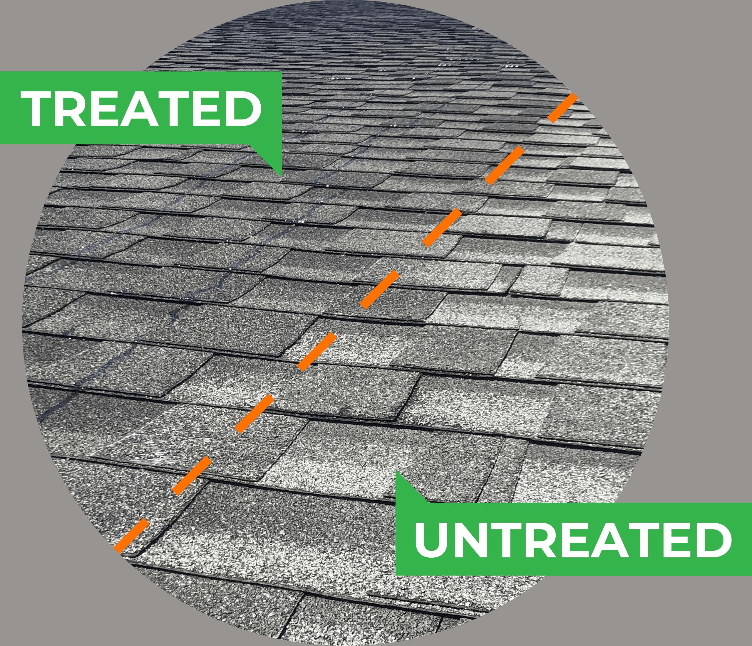 Treated vs. Untreated shingles 4
