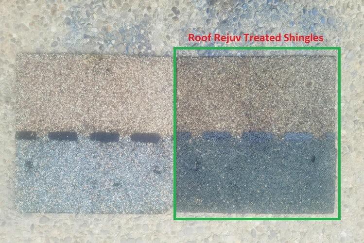 Roofrejuc Treated Shingles vs. Untreated Shingles